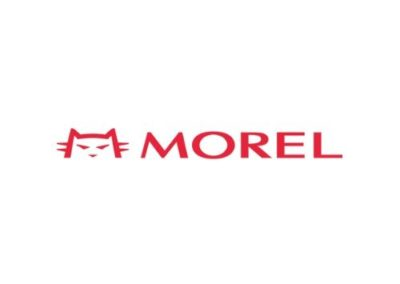 Morel